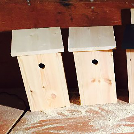 New National Nest-box Project
