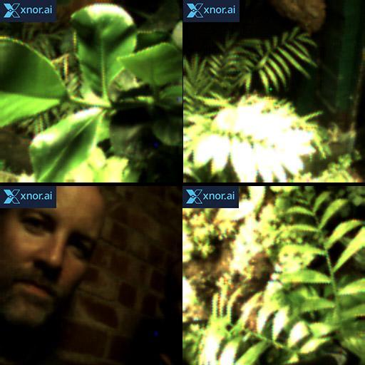 Worlds-first plant selfie!